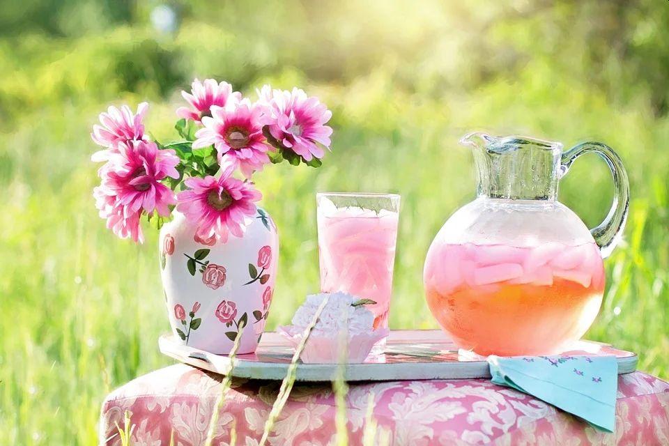 napój roślinny